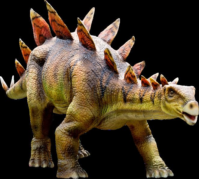 Stegosaurus Dino Experience Park
