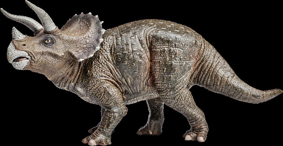Kinder pretpark Triceratops